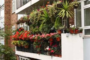 balcon_5